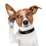 changeinnovators blogs listening with intensity